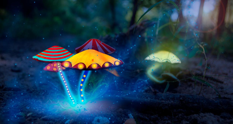 magic mushroom art - photo #26