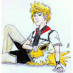 Roxas and his Jolteon