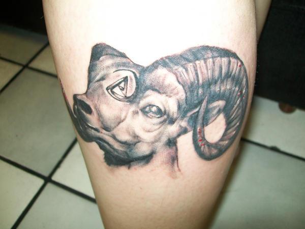 Onea bonitha for Silver fox tattoo