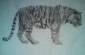 Tiger by GabrielGrob