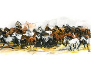 Herd of Horses by GabrielGrob