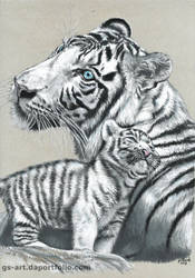 White Tigers (Commissioned) by GabrielGrob