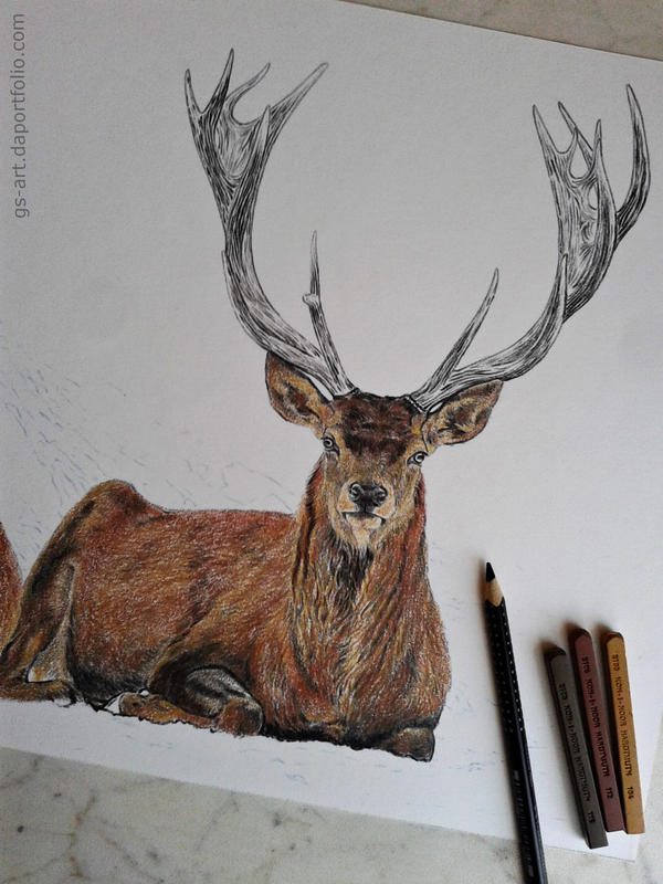 Deers (commissioned) 2nd picture