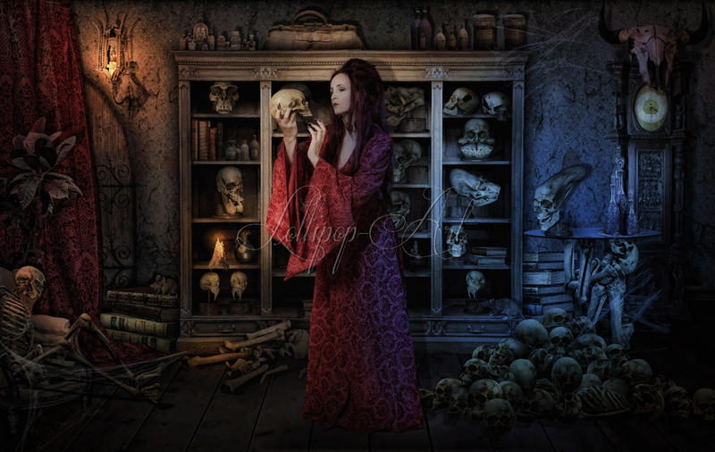 Priestess Collectorsroom by Lollipop-Stock