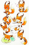 fox kwami