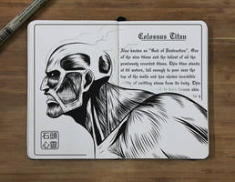 #18 Colossus Titan by Stone-Arazel-Heart