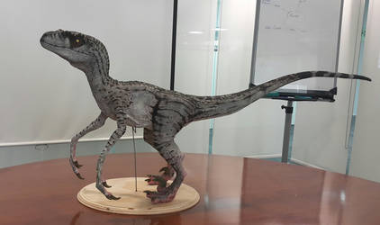 Jurassic Park-Velociraptor Model(Version 3:Female)