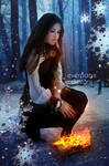Winter Flames