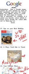 Google Meme by Mineshaft