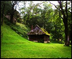 Fairy Tale House by drefeyja