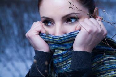Wintery by drefeyja