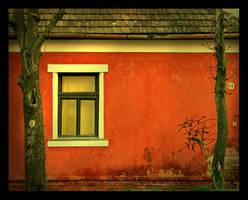 Window by shoneon