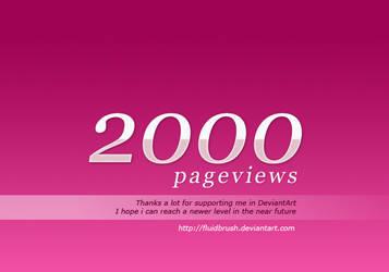 2000 Pageviews by fluidbrush