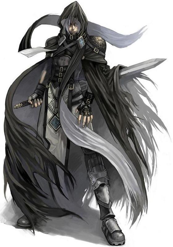 Shadow Warrior by HikzBR