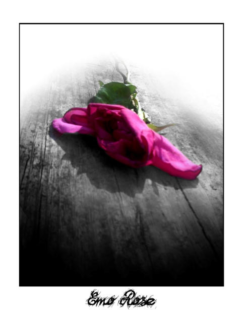 Lonely the emo rose collection by lil crizzy on deviantart - Emo rose pictures ...