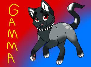 ~ Gamma ~