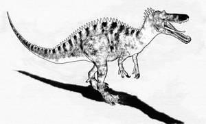 Suchomimus Sketch