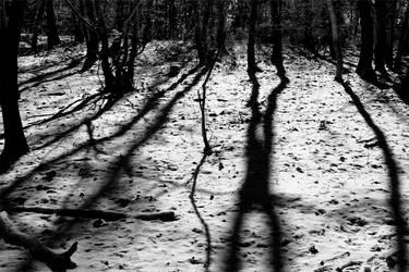 sensation.winter by Moniquette