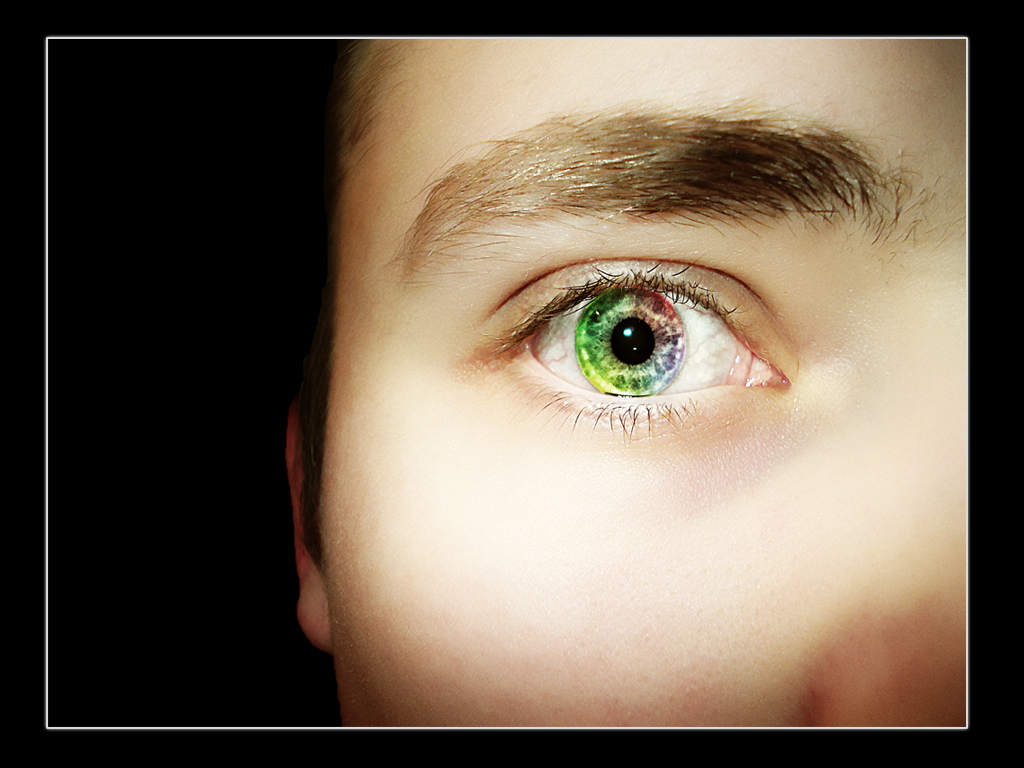 Vivid vision by reaktor2k