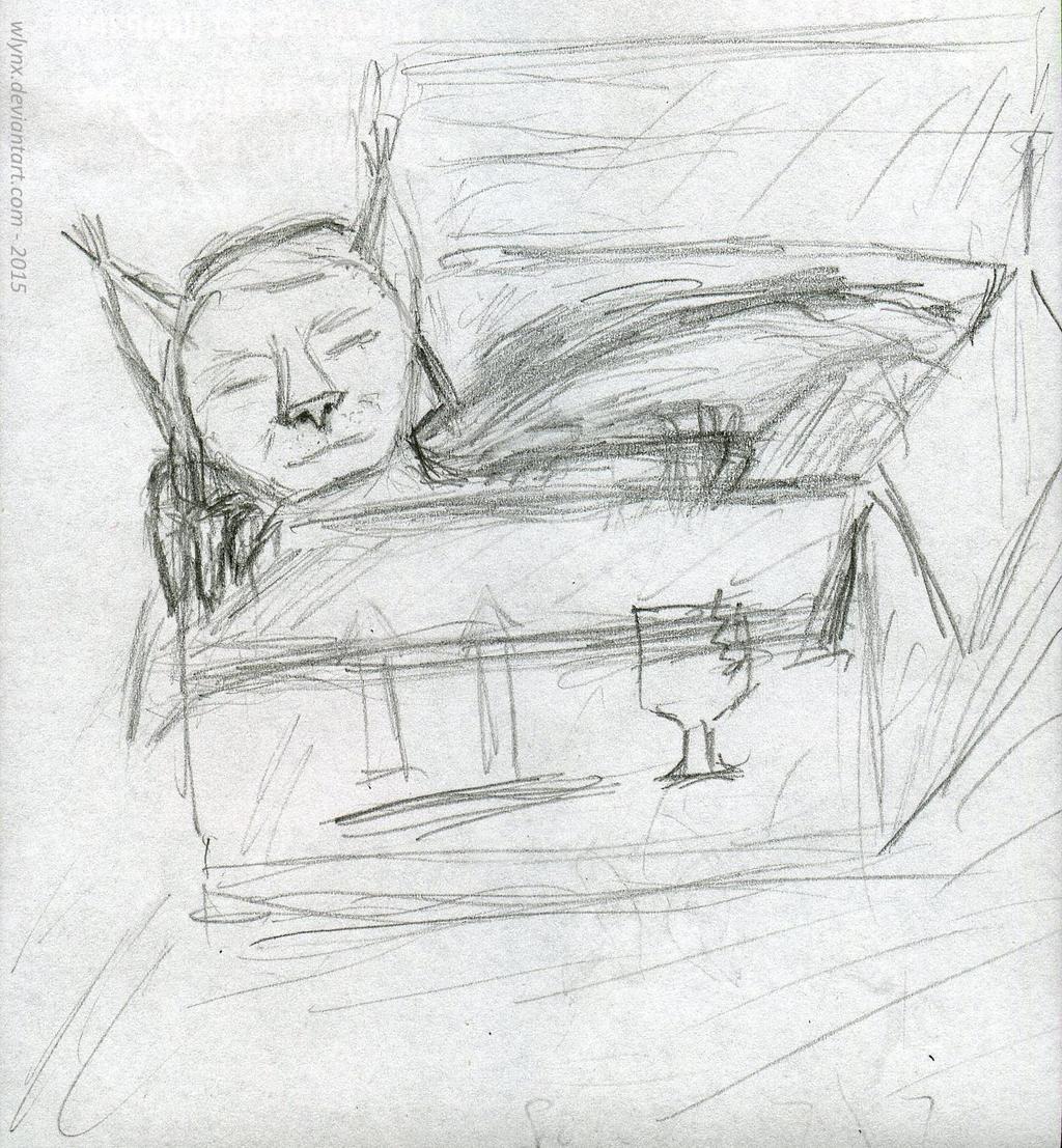 Sleeping box