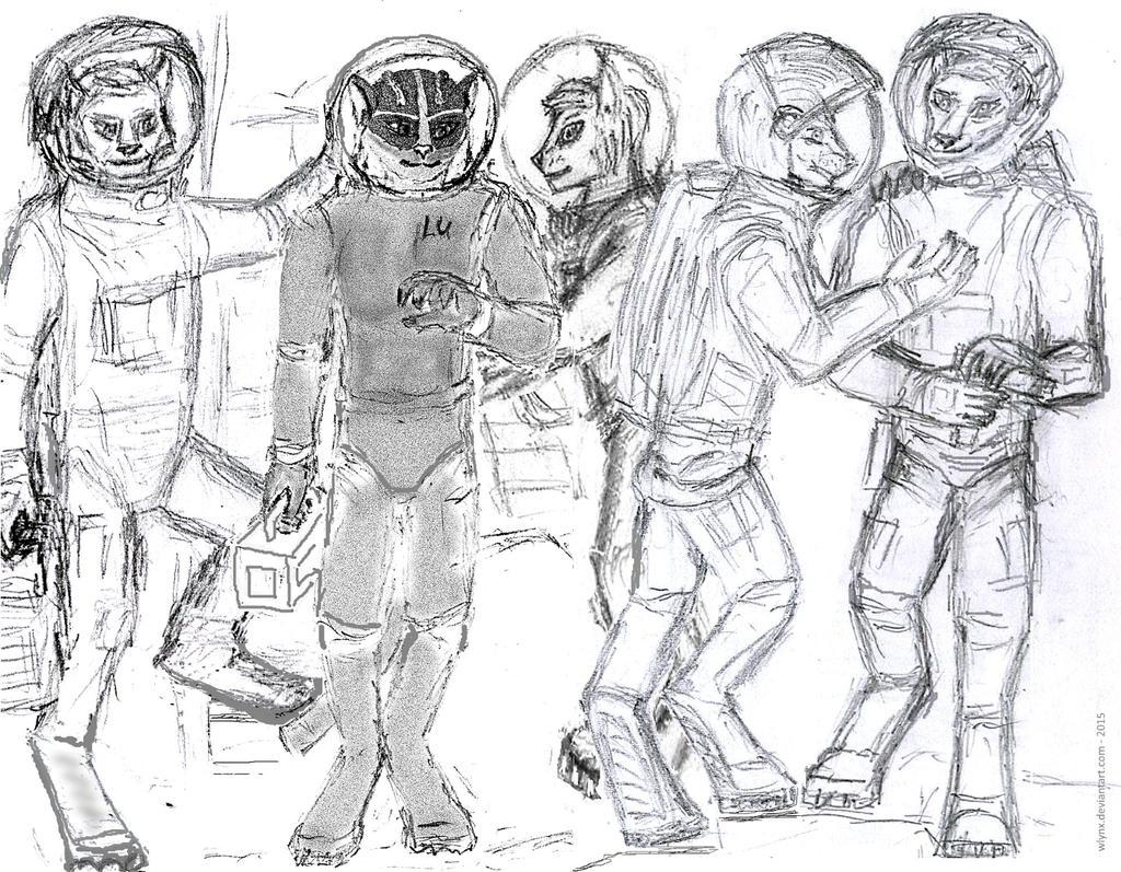 WLynx's space team 2014-2015 (WIP-0)