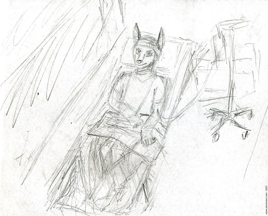 Hospitalized jackal
