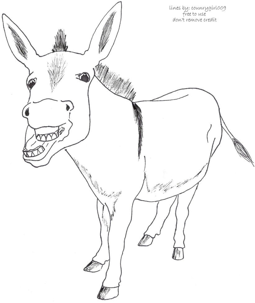 Line Drawing Donkey : Donkey lineart by counrygirl on deviantart