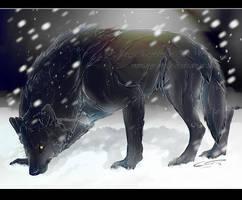 .:PA:Black wolf in White land:. by Mayasacha