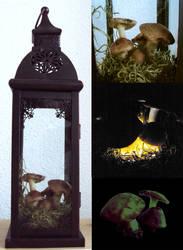 Mushroom lamp by Ermelyn