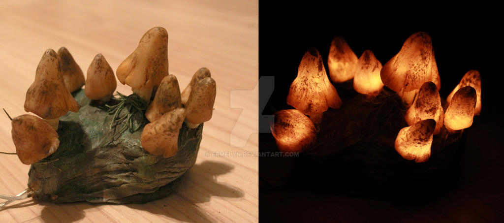 Glowing mushrooms by Ermelyn