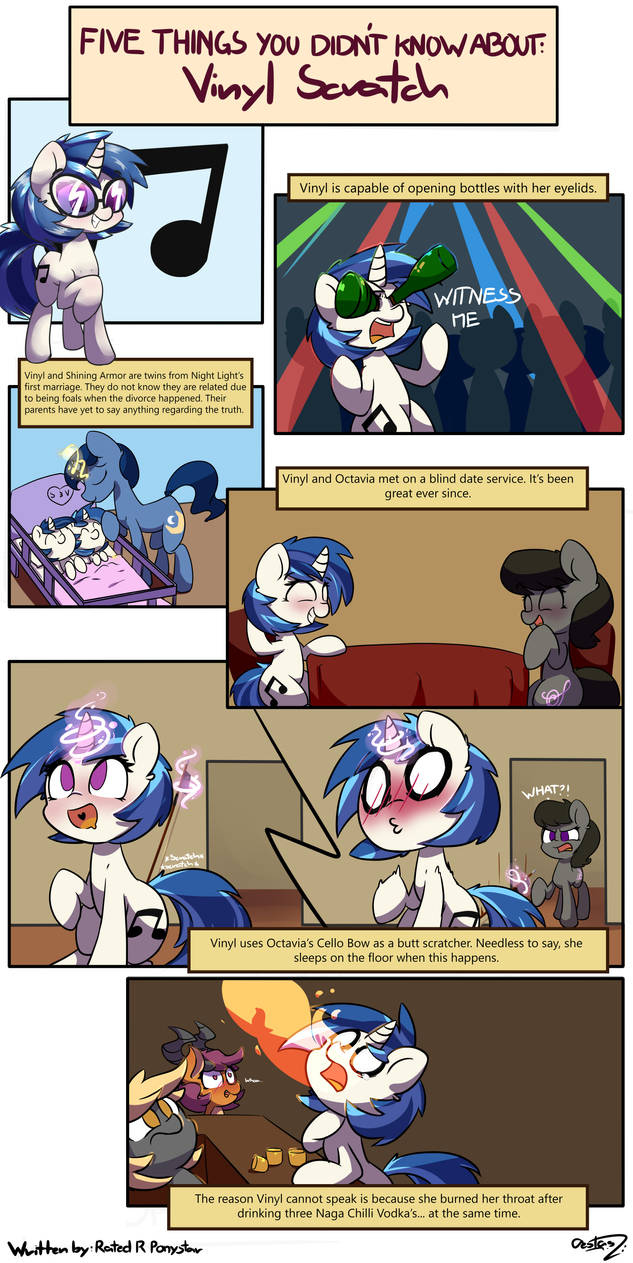 5 Things You Didn T Know About Vinyl Scratch By Rated R
