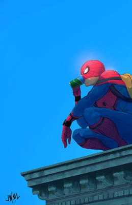 Spider-Man comes home!