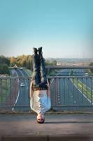 Planking - Skulling by Kiwikku