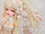 Cream Rose ::03::