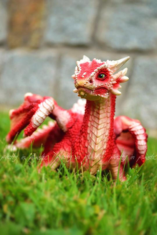 wild dragon by prettyinplastic