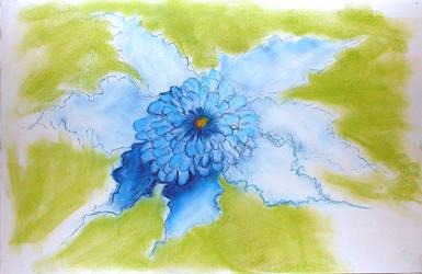 Blue Flower by midnight-blue-heart