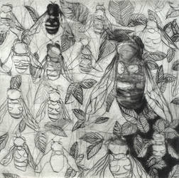the bees by guitarsallly