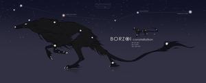 Adopt BORZOI [SOLD]