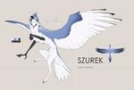 Szurek Custom Design