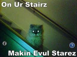 Again. Ebil Cats! by AwkwardBlueDuckie
