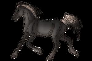 Foal lines