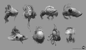 Ocean creature thumbnails