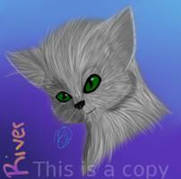 Fur/Eye practice by BlazingRiver