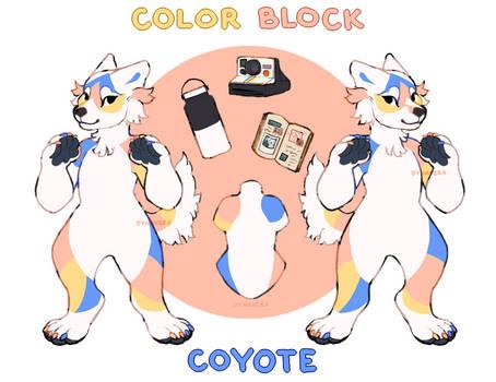 [CLOSED] Color Block Coyote