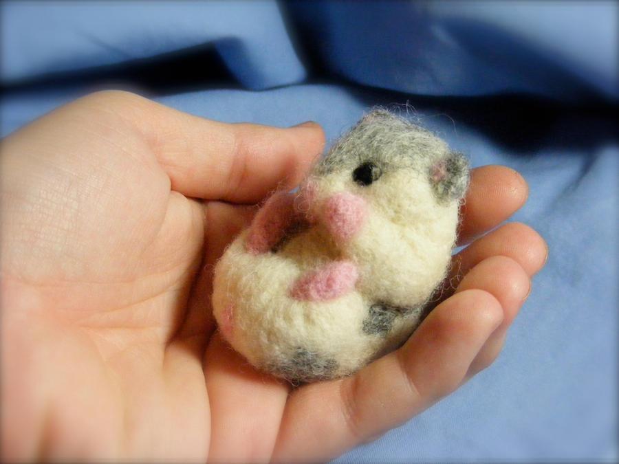 Dwarf Hamster | lol-rofl.com