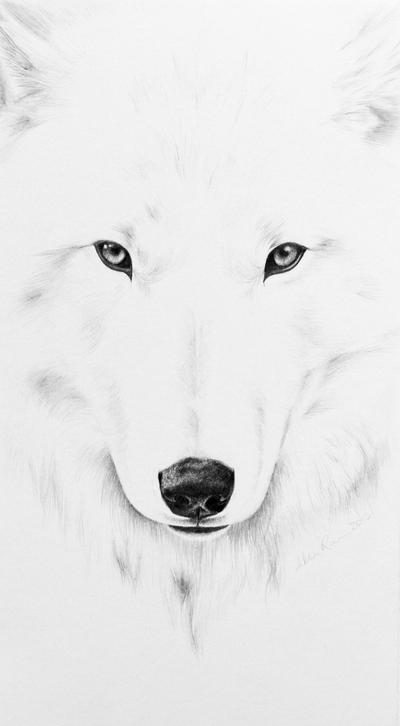 White Wolf by AllieRaines