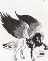 Hitoro the pegasus
