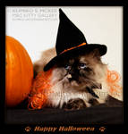 Happy Halloween Cat - CHIBI by Kumiko-Art