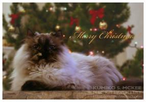 Merry Christmas 2 by Kumiko-Art