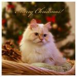 Merry Christmas 3 by Kumiko-Art